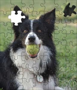 puzzle-consensus