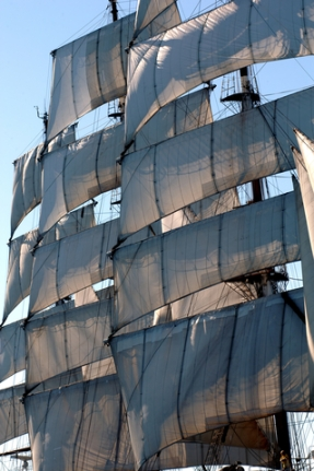 wind-in-the-sails
